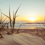 gulf_shores_vacation